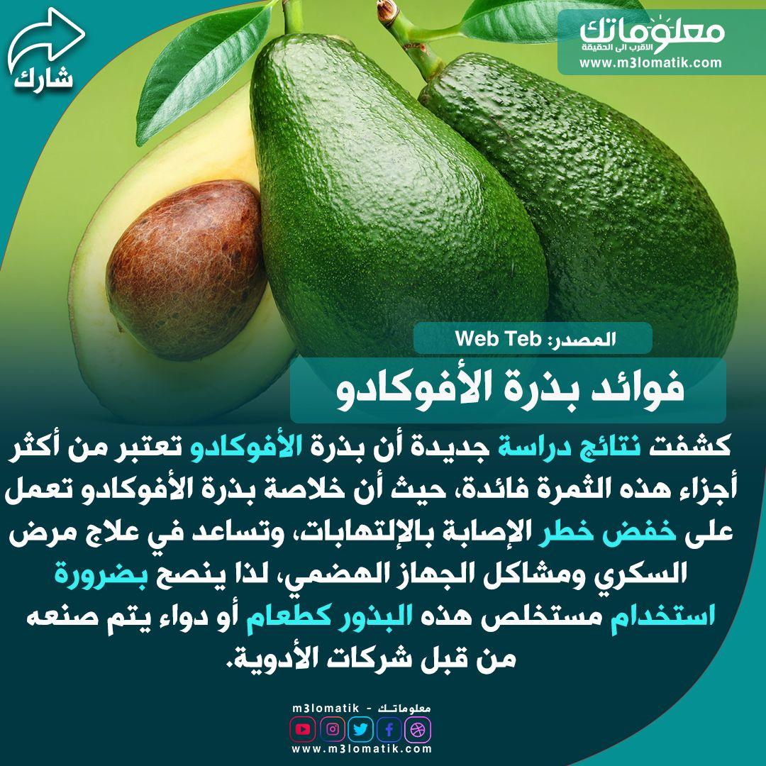 فوائد بذرة الأفوكادو Avocado Fruit Food