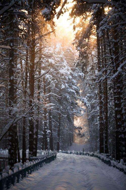 "wonderous-world: "" Snow Road by Terroplis A. """