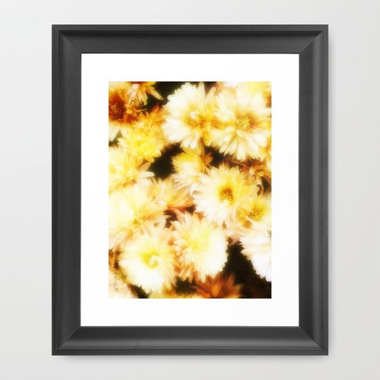 Golden Michaelmas Daisies by artbymimulux
