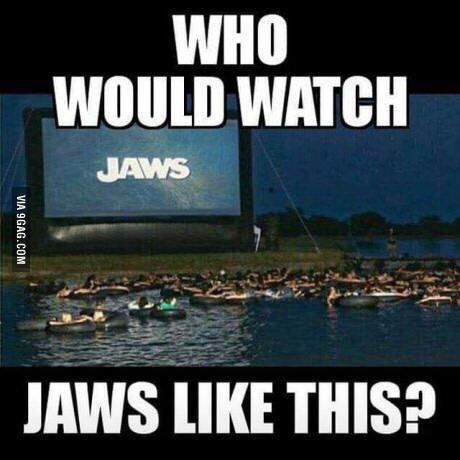 Oddnmacabre So Would Ya Watch Jaws Like This Funny Jokes Funny Relatable Memes Funny Pictures