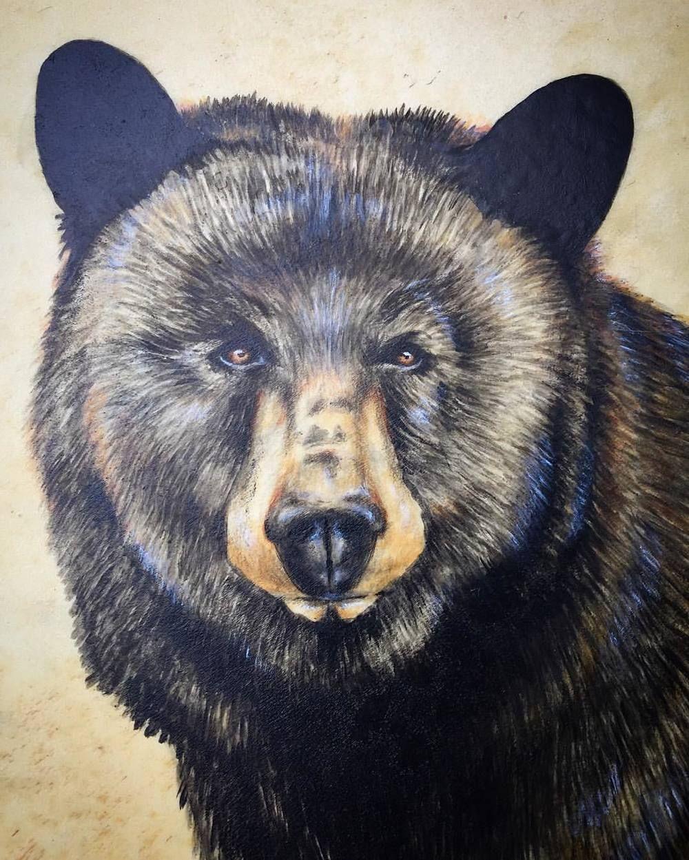Black Bear Drum