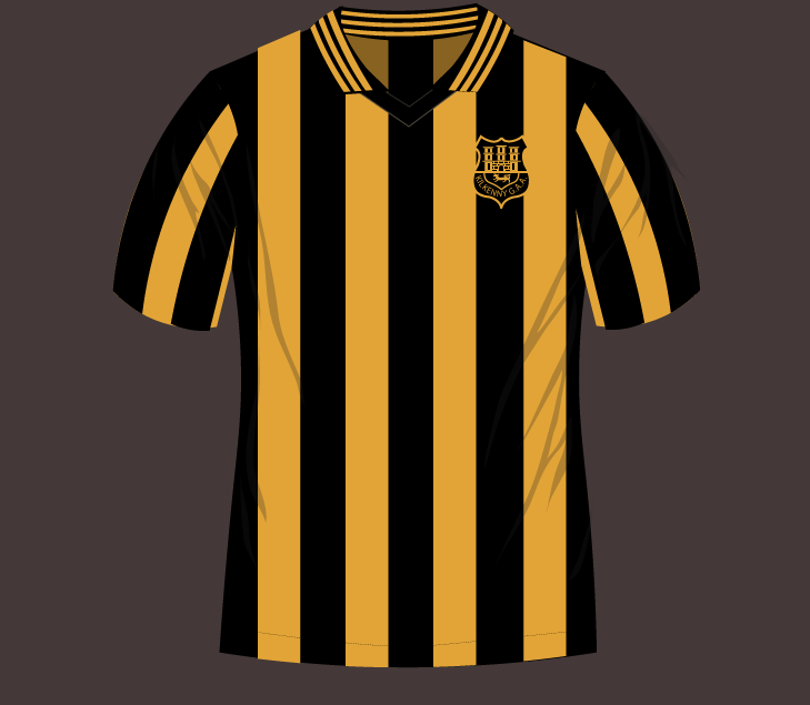 the latest 31fa0 a3ef0 Kilkenny 1980s Retro GAA Jersey -Adult Sizes - Available Now ...