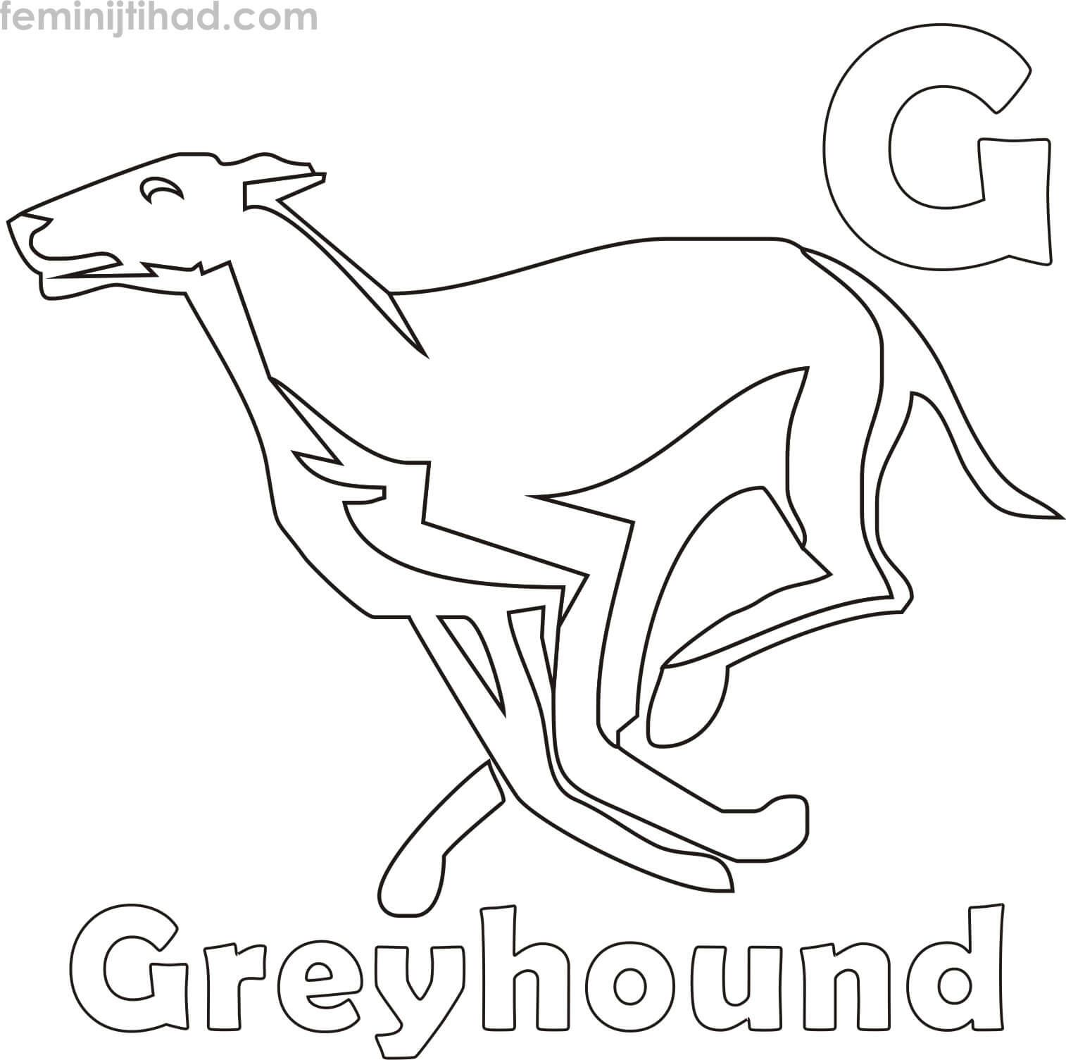 Greyhound Coloring Pages For Kids Coloring Pages For Kids