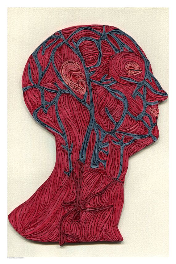 veins of the head poster, Doctor Decor Print, Minimalist goth poster, Color anatomic illustration, Paper art print, quilled poster, 12x18 in...