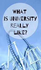 Image result for university be like