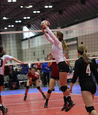 View Athlete Profile Athlete Volleyball Setter Volleyball