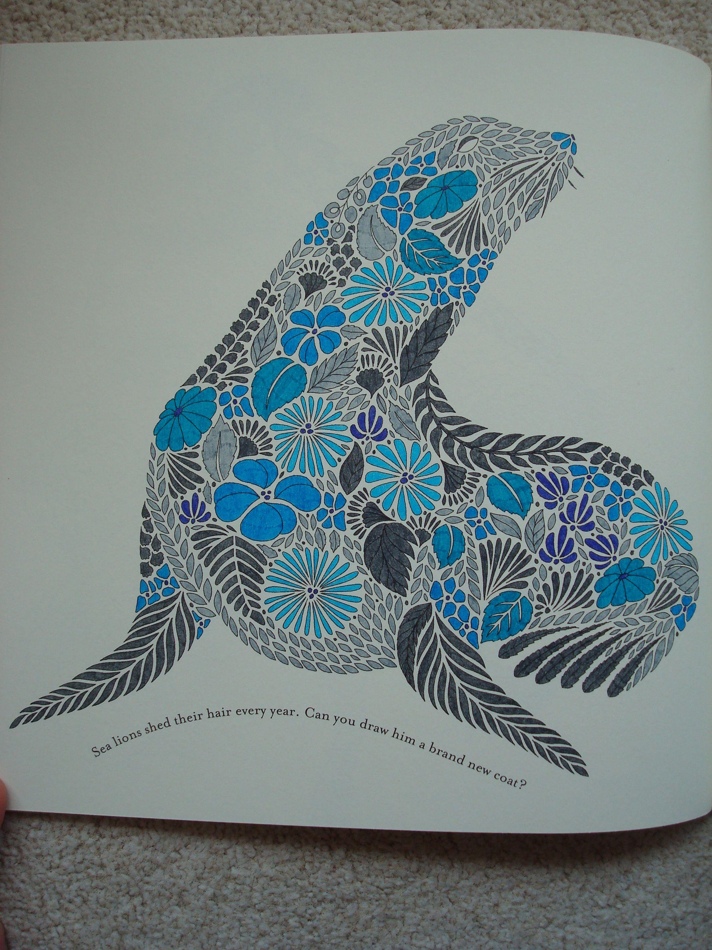 Animal kingdom coloring book gorilla - Coloring Ideas Seal