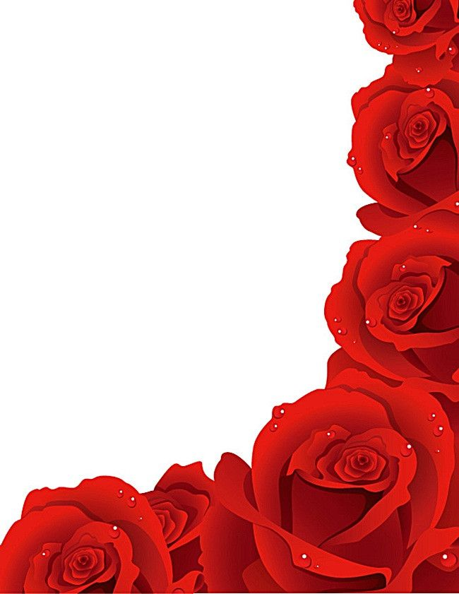 Rose Border Flower Clipart Red Roses Background Red Roses Wallpaper
