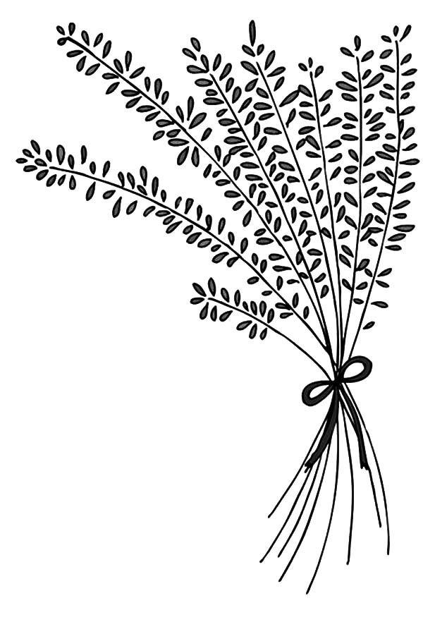Lavender-Flower-Arrangement-Coloring-Pages.jpg (600×882