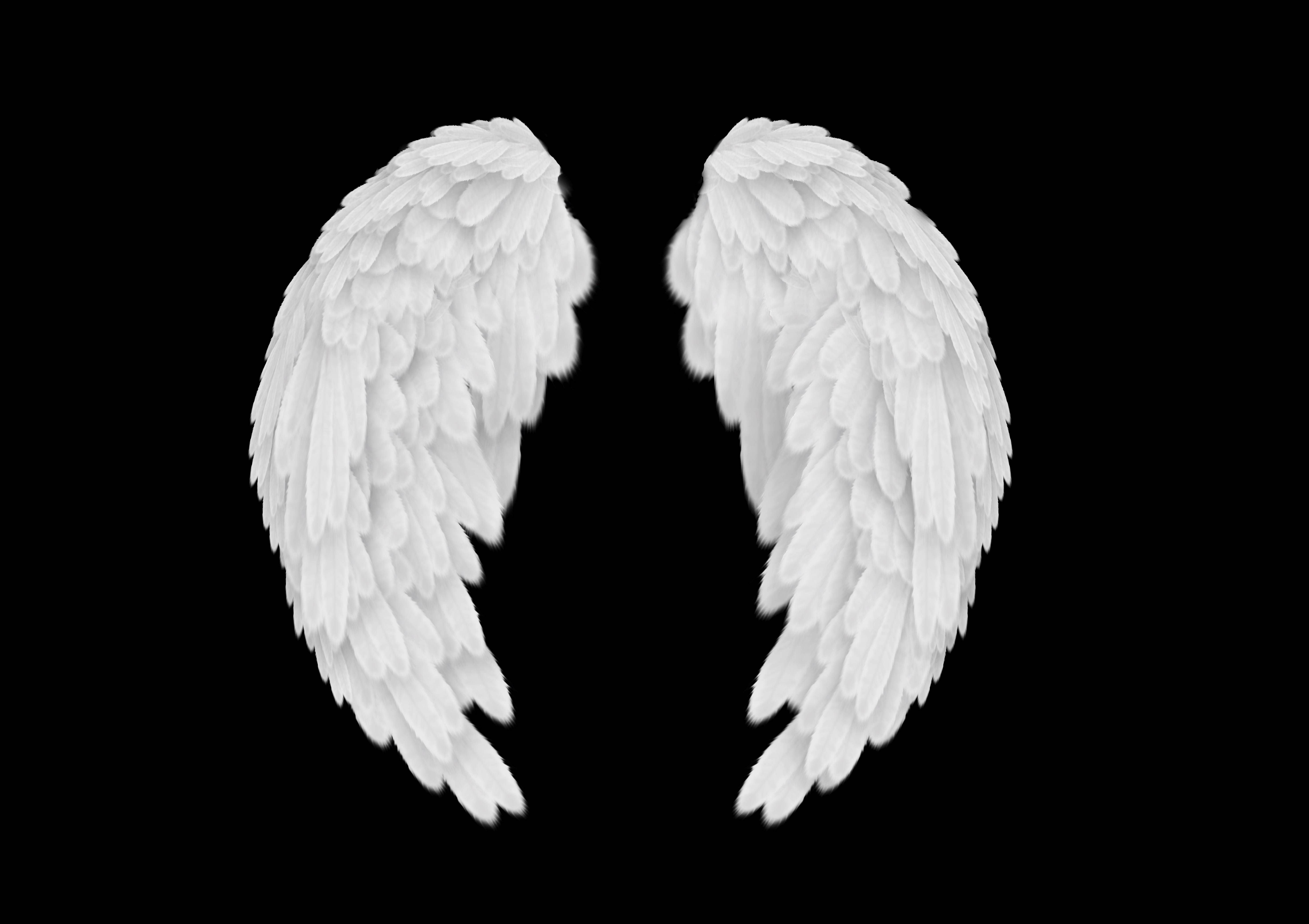 angel-wings-18.jpg (5906×4169) | Ref Angel | Pinterest
