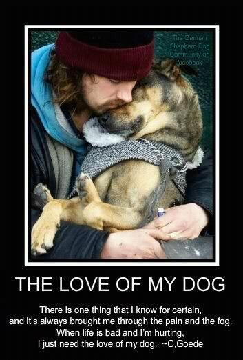 This is soo true! Love my dogs; Brutus, Cashious, Remmie and Casey