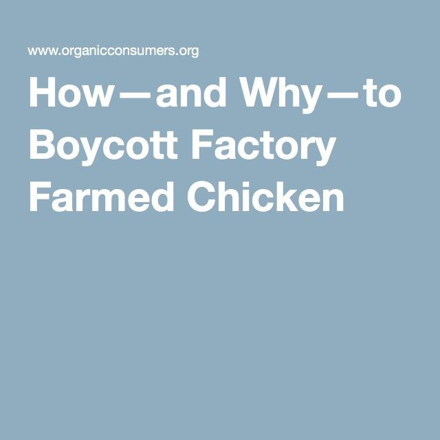 How—and Why—to Boycott Factory Farmed Chicken