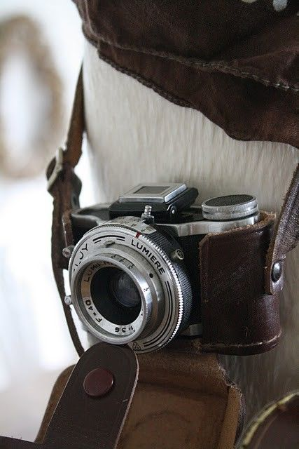 <3 Cameras <3 photography <3 vintage
