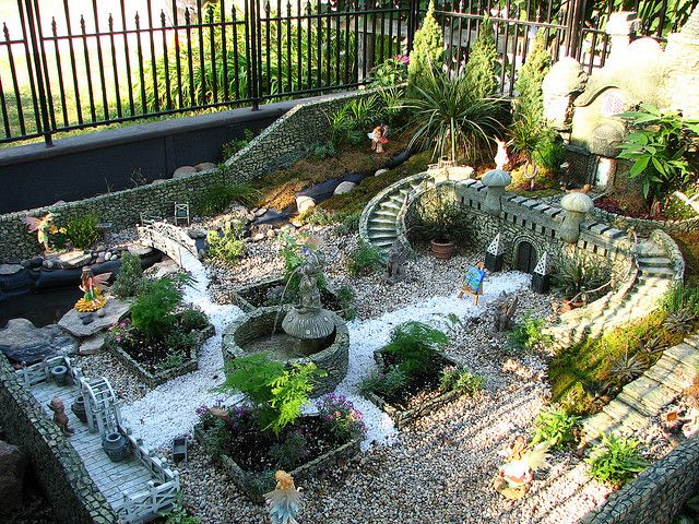 Fairy Garden Fairy Garden Houses Fairy Garden Fairy Garden Plants