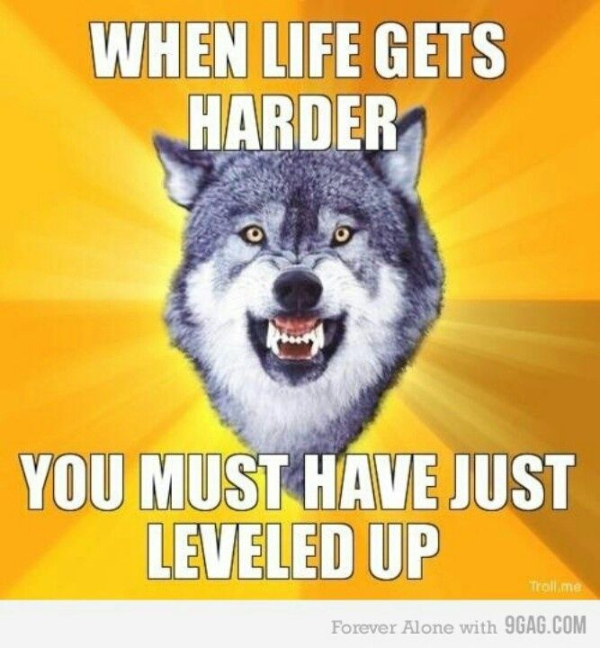 Courage Wolf Meme