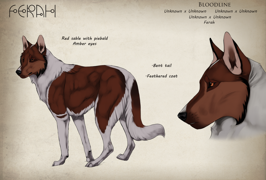 Characters wolf board in 2019 Animal