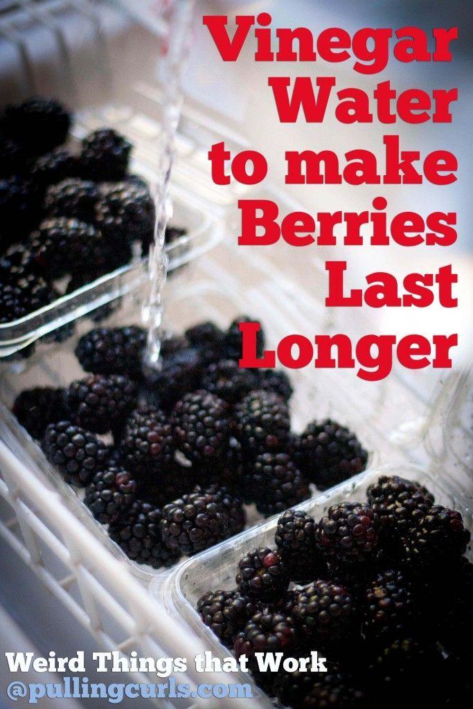 vinegar to rinse berries to help them last longer {wierd things that work}.Use vinegar to rinse berries to help them last longer {wierd things that work}.
