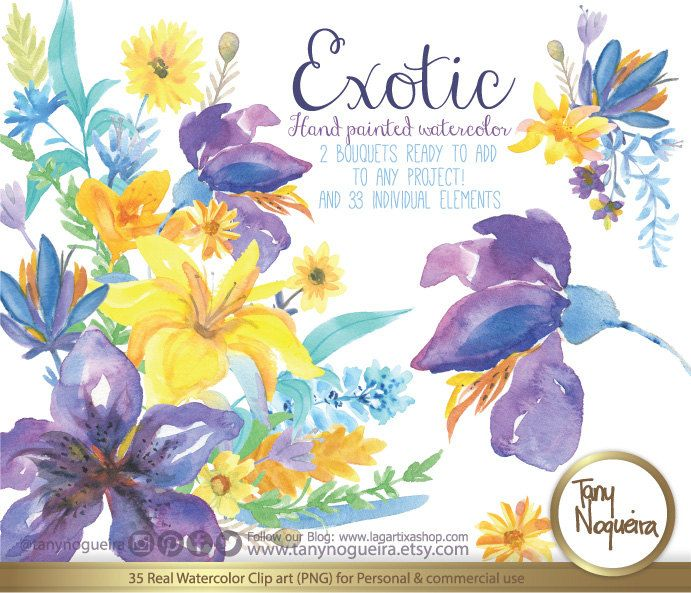 Exotic Watercolor Floral Wedding Elements Clipart PNG Blue Flowers Spring Rustic Arrangement Posies Bouquet For Invitations