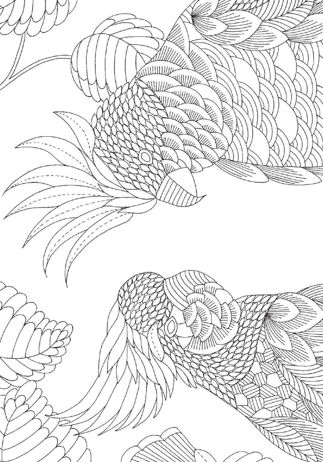 El reino animal. 30 postales para colorear by Cristina Rodriguez - issuu