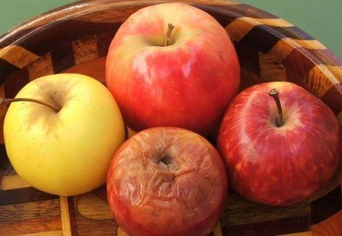 18 Increíbles tips para conservar por más tiempo tus alimentos