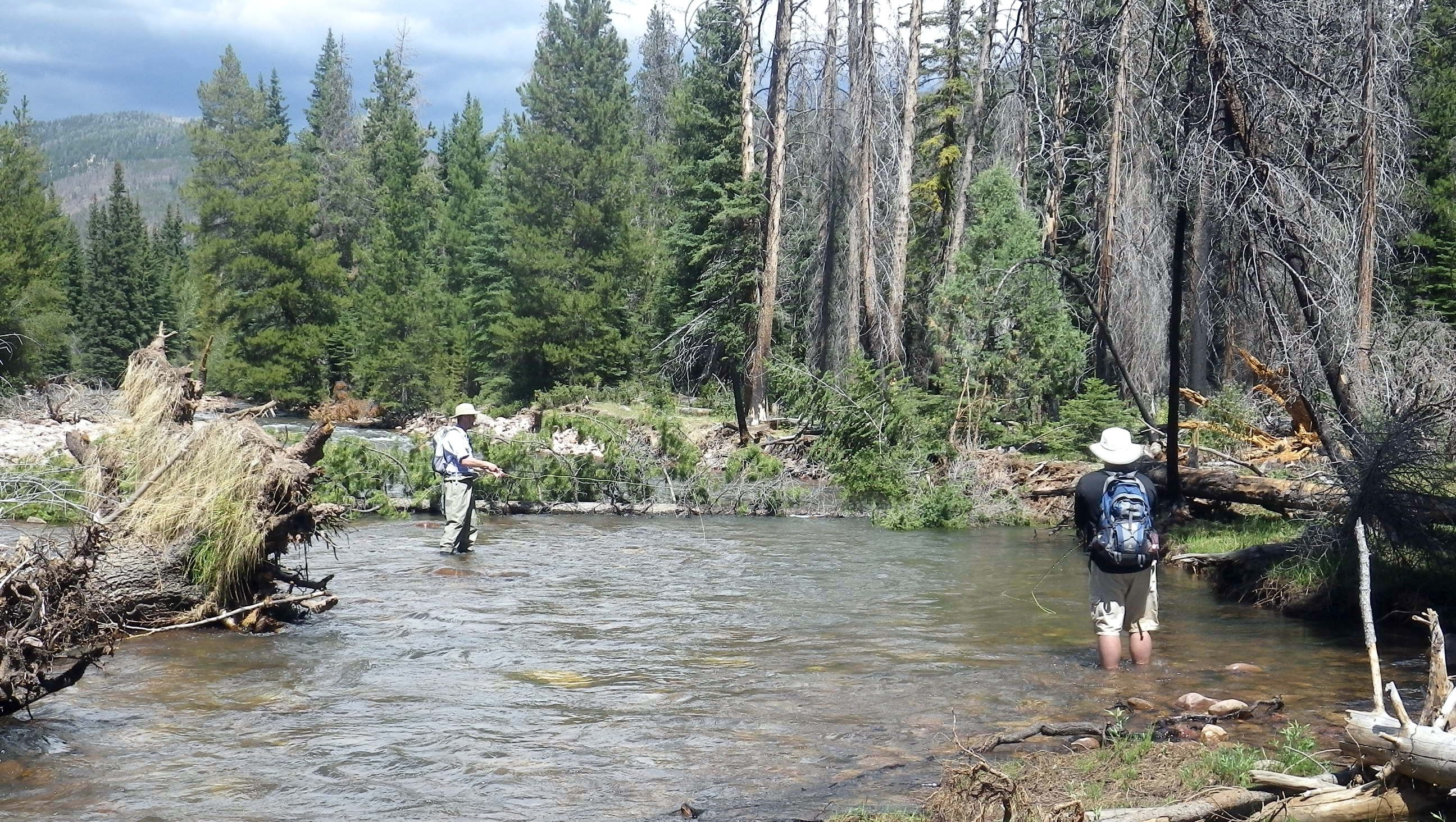 Utah 39 s yellowstone river if i 39 m not going to catch for Fly fishing utah