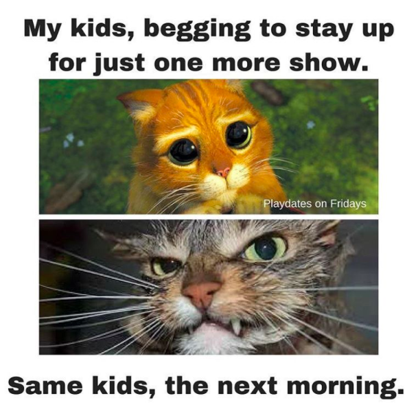 100 Parenting Memes That Will Keep You Laughing For Hours | meme