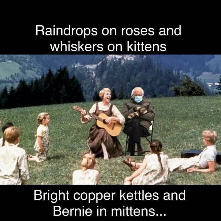 Pin By Torie Story On Humor In 2021 Copper Kettle Whiskers On Kittens Bright Copper