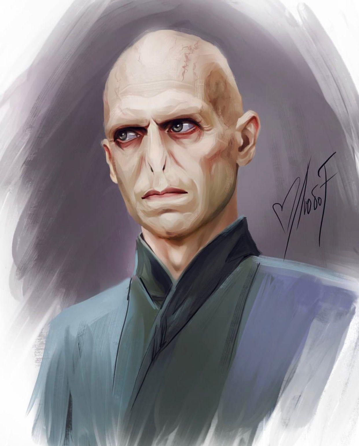 Liubofirst Hp Lord Voldemort Harry Potter Artwork Harry Potter Drawings Harry Potter Patronus