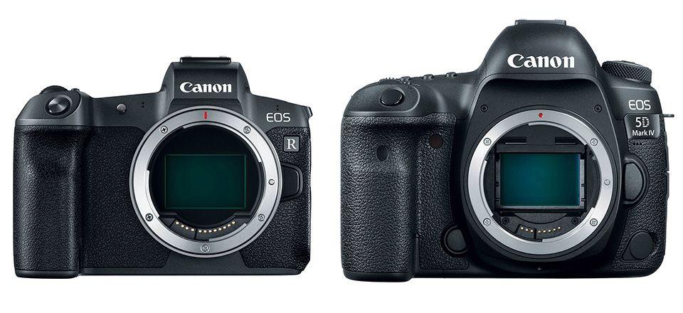 Canon Eos R Vs Canon 5d Mark Iv Canon 5d Mark Iv Canon Eos Canon