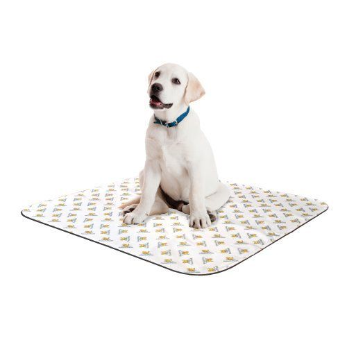 Reusable Absorbent Potty PadSmall 17x23White * You can