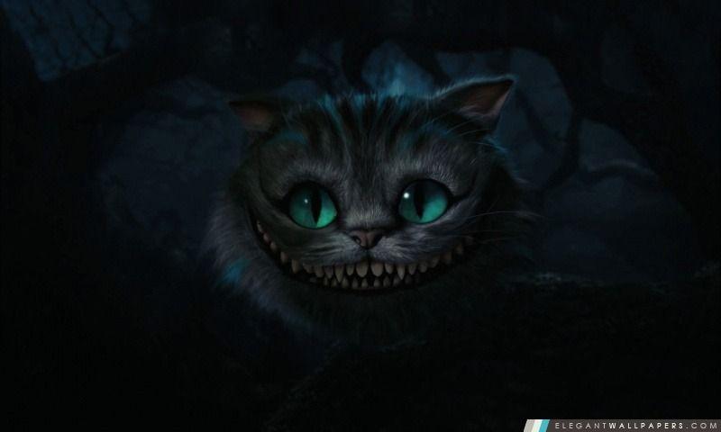 Chat De Cheshire Alice Au Pays Des Merveilles Arriere Plans Hd A Telecharger Chat De Cheshire Alice Au Pays Des Merveilles Chat Celebre