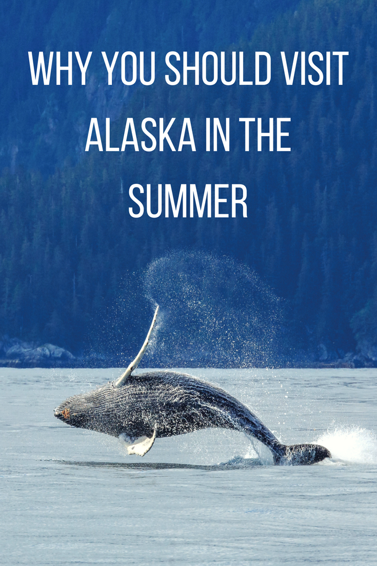 Summer is the best time to visit the final frontier - here's why. #alaska #visitalaska