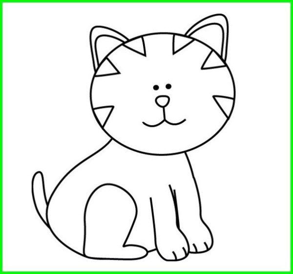 Gambar Kucing Lucu Imut Dan Paling Menggemaskan Sedunia Kucing Lucu Gambar Kucing Lucu Kartun