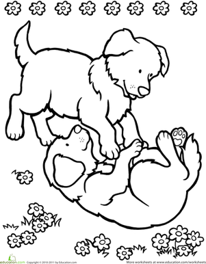 Playing Puppies Worksheet Education Com Puppy Coloring Pages Puppy Crafts Coloring Pages