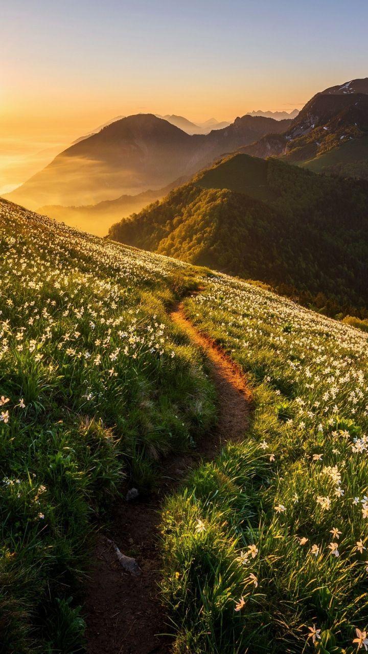 Landscape, road, mountains, sunrise, 720x1280 wall