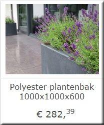VEILIG BETALEN MET IDEALEIGEN ONTWERP STUDIOLEVERING IN HEEL NEDERLAND EN BELGIEPRODUCTEN VAN DE BESTE KWALITEIT         ONZE AANBEVELINGENHet TuinlevenHet Tuinleven is gespecialisserd in het leveren van exclusieve tuinmaterialen. Of u nou opzoek bent naar een plantenbak voor uw balkon, of een complete vijver met waterval en verlichtingsplan.