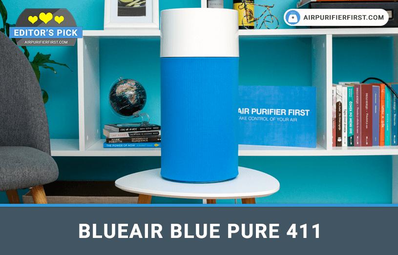 Blueair Blue Pure 411 Air Purifier Review in 2020 Air