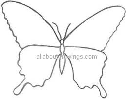 art clip picture butterfly drawings butterfly outline pattern
