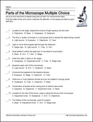 Parts Of The Microscope Worksheet