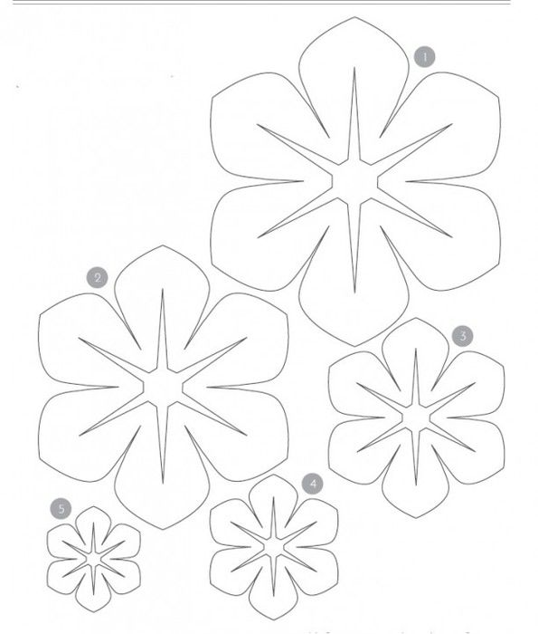Paper Flower Petal Template | Paper Flowers | Pinterest | Flower