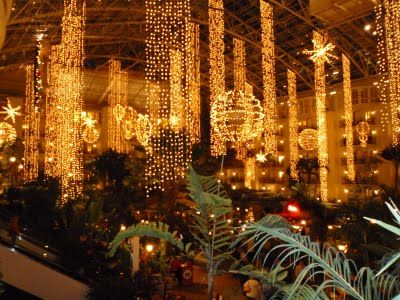 Opry Land Hotel at Christmas. One of my favorite places to go & stay ...