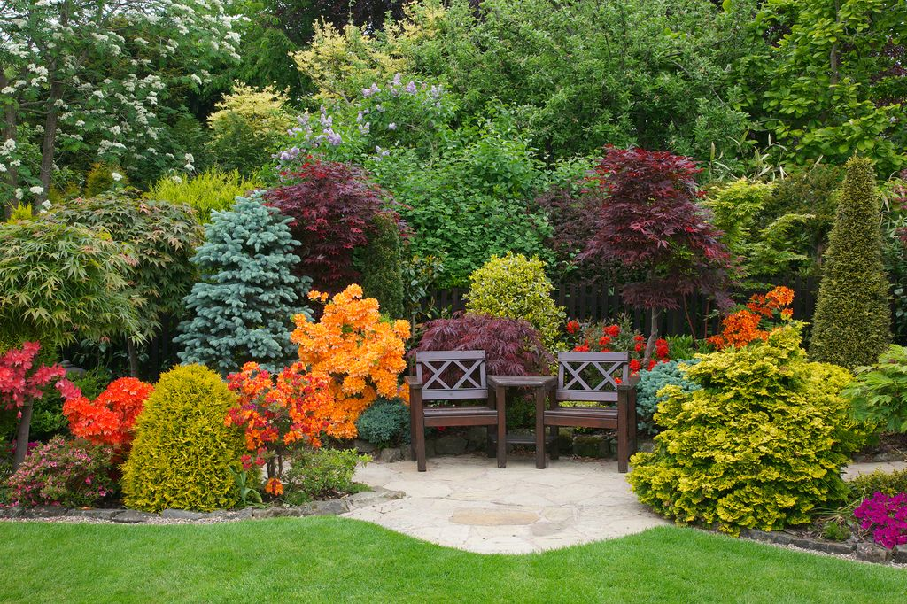 A colourful place to sit #privacylandscaping