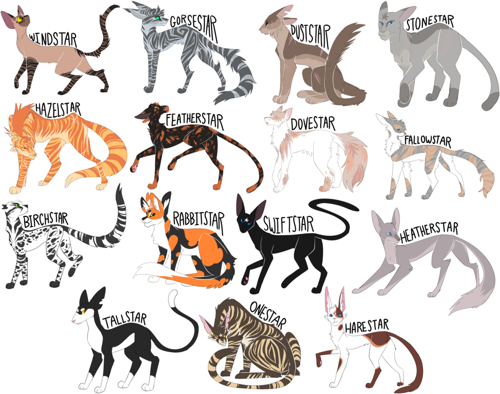 Every Windclan Leader Ever! by Draikinator Warrior cats