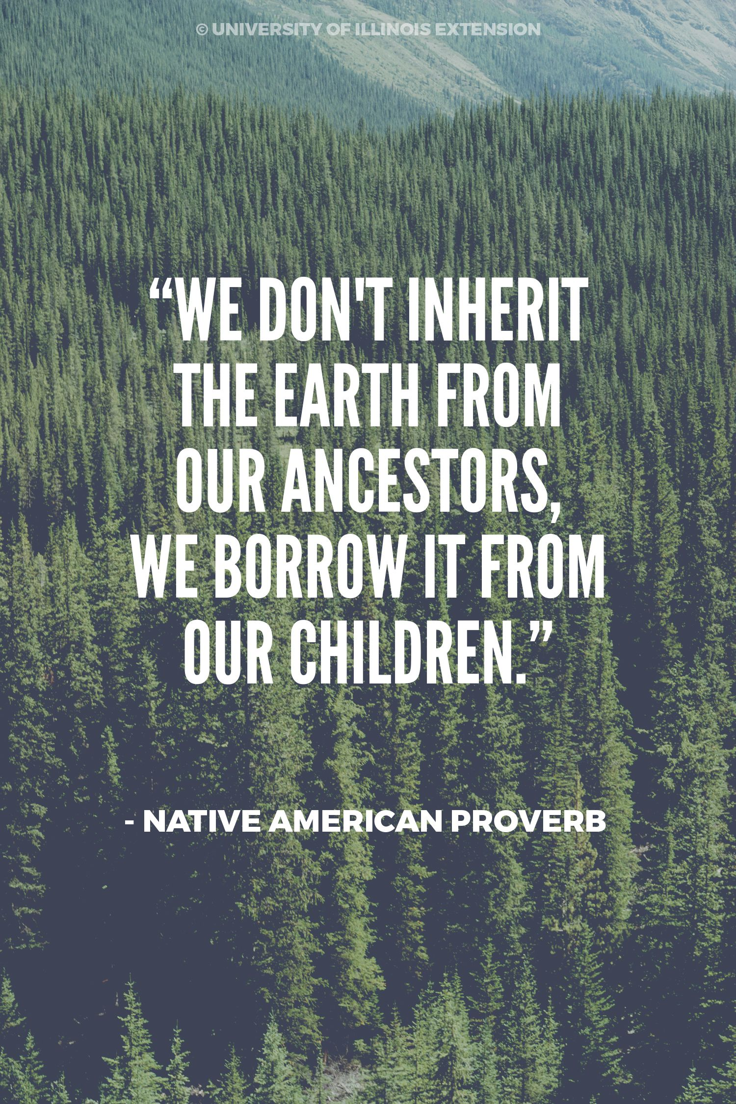 We Don T Inherit The Earth From Our Ancestors We Borrow