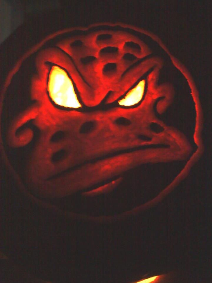 Wild Wing would approve this pumpkin!