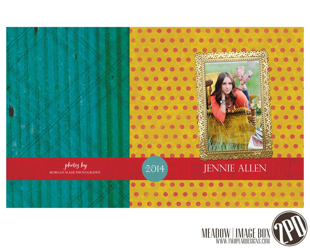 Image Box designs from the Meadow Collection @Two Pear Designs. #polkadots #teal #yellow #red