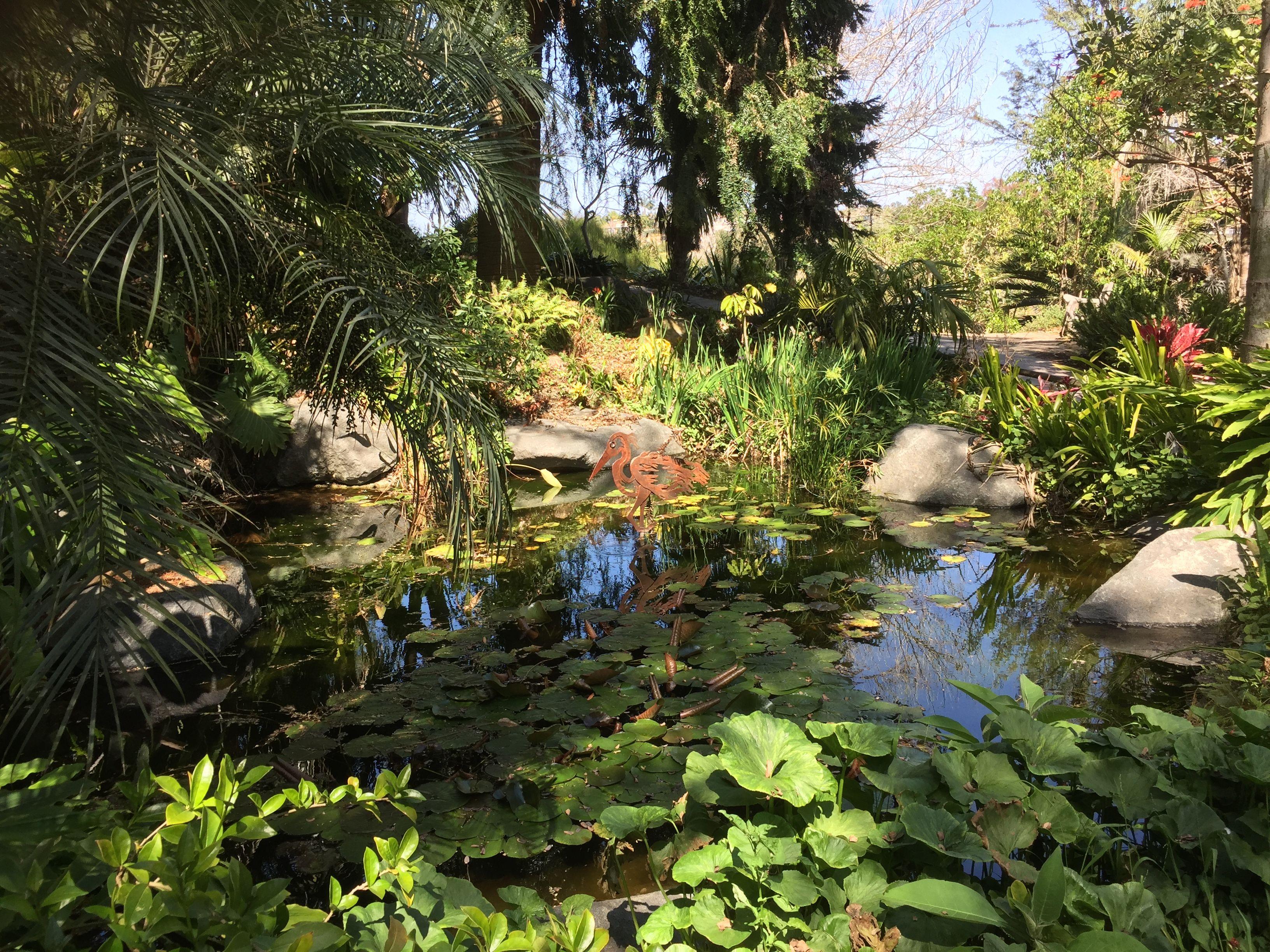 8fab39386fff7eab7743ba68ba0a731c - San Diego Botanical Gardens Free Tuesday