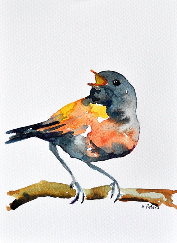 Original Watercolor Painting Orange Grey Bird Small Cute Bird