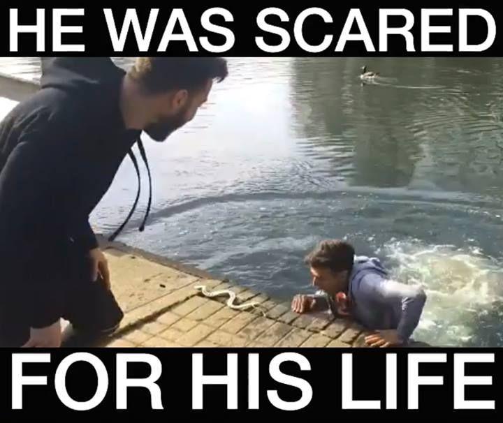 HE FELL IN THE LAKE