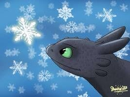 Toothless and snow. :)